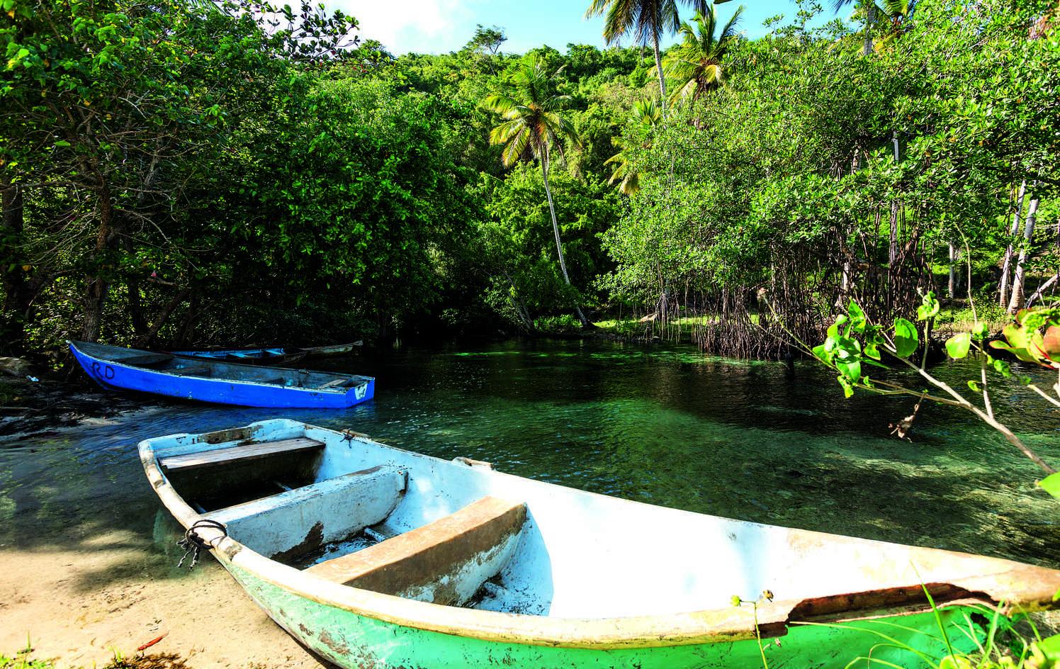 PROTECTION DES FORÊTS DE MANGROVES VIERGES ET SOUTIEN À L'ÉCONOMIE LOCALE EN RÉPUBLIQUE DOMINICAINE