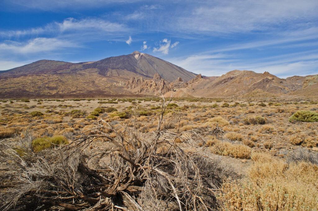 Tenerife - Le Voyaging
